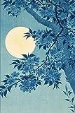 Tarot Journal: Daily Tarot Reading Tracker   3 Card Spread Oracle Notebook   Blue Moon Cover