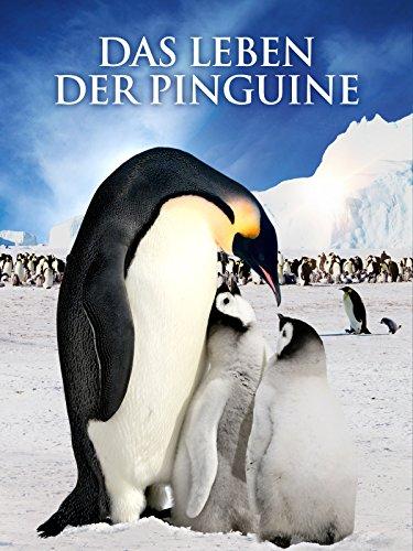 Das Leben der Pinguine