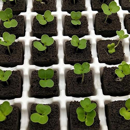 flower205 Granulés De Tourbe en Pastilles, 20pcs Seeding Soil Block pour Aider À La Croissance des Plantes 20mmx20mmx40mm big Sale