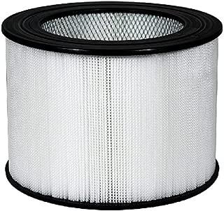 Nispira Replacement True HEPA Air Filter Compatible Honeywell 24000, 1 Filter