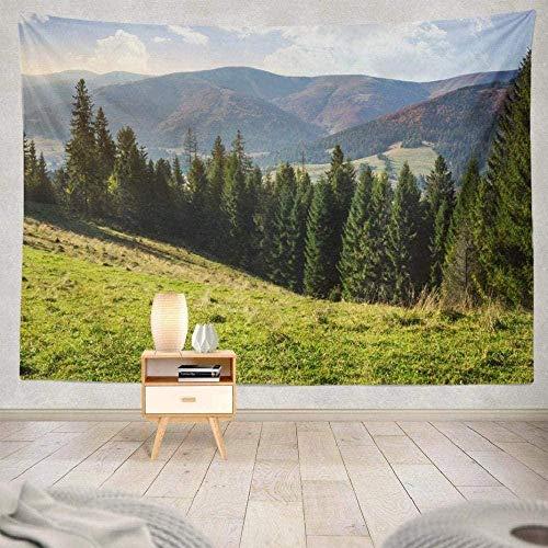 JXZIARON Tapiz Art Paño para Colgar en la Pared Impresión HD Cocina Dormitorio Sala de Estar Decoración,Bosque Tormenta Bosque Tormenta Bosque Árbol Montaña ations para 100cm x 150 cm