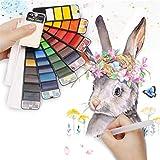 Crazy Ling Conjunto de Pintura de Pigmento de Acuarela sólida Whirl portátil con Pincel de Agua de Color Brillante, para Suministros de Arte del Artista Estudiantes Dibujar Pintura Regalo (25 Color)