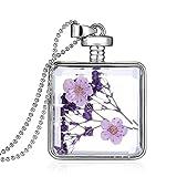Daesar Mujer Collar Flores Secas Collar Transparentee Botella de Deseos Collar Colgante Collar 60CM