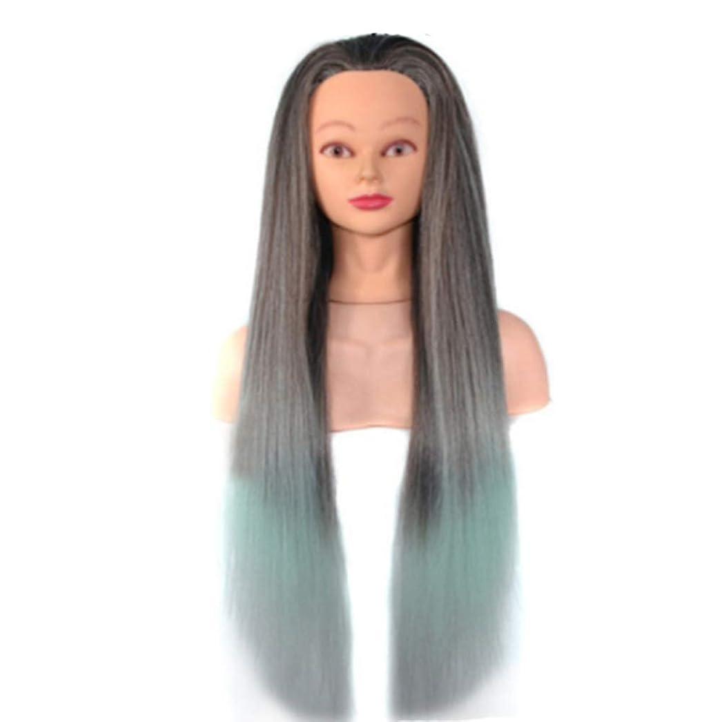 バイソンインポートパンダ化粧板髪練習帽子ジュエリーディスプレイヘッド金型高温シルクグラデーションカラートレーニングヘッドヘアマネキン,09