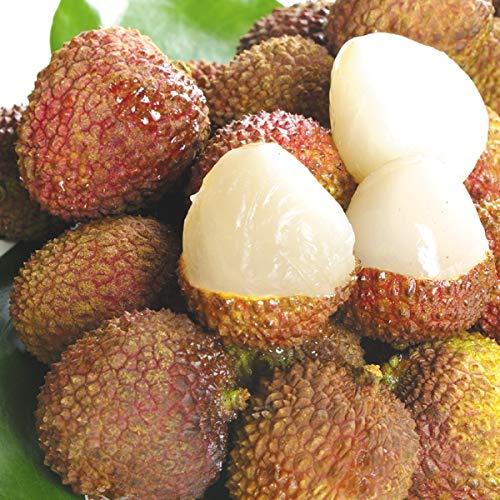 国華園 台湾産 生ライチ 玉荷包 3�s 1組 南国フルーツ
