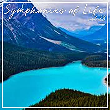 Symphonies of Life, Vol. 28 - Piazzolla; Bandoneon Concerto, The Four Seasons