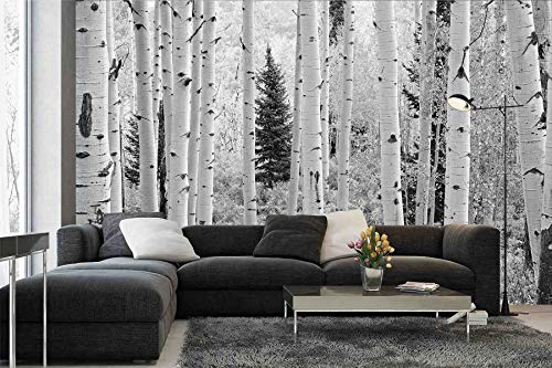 12' Wide by 8' High(144' X 96') Wall Art Mural Photo of Black & White Aspen Birch Forest HD DIY 3D Removable Reusable 5 Years Warranty Murals prepasted self Adhesive Wallpaper