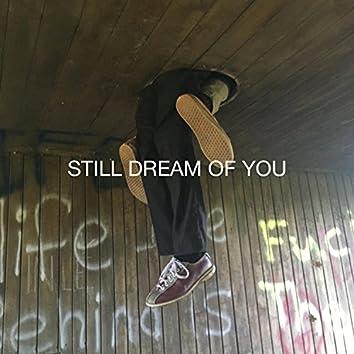 Still Dream of You