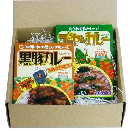 【沖縄の味の贈り物】 沖縄カレー2箱ギフトセット (ゴーヤーカレー 180g・黒豚カレー 180g)