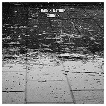19 Anxiety Reducing Rain and Nature Sounds