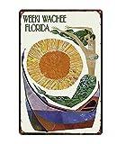 Retro City Florida Golfo De México Shabby Chic Carteles De Chapa Cartel De La Lona Bar De Pared Restaurante Arte del Hogar Decoración 40X50Cm (Jn5011)
