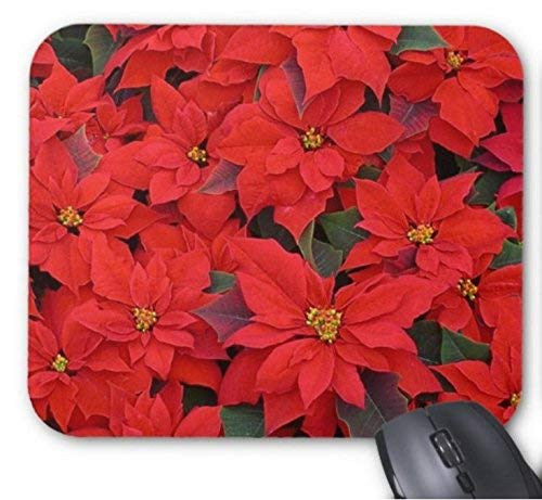 Gaming mouse pad rote weihnachtssterne i holiday floral für desktop und laptop 1 pack