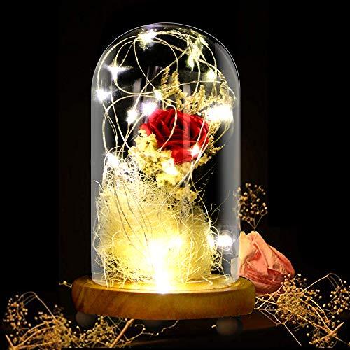 KIPIDA Rose Geschenk Kit, Die Schöne und das Biest Rose Glaskuppel Künstlich Rose Lampe LED Licht für Weihnachten Geschenk,Frau,Freundin,Freunde,Oma,Jahrestag,Hochzeit,Geburtstag Geschenk
