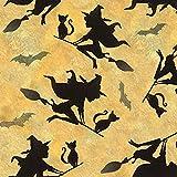 Halloween Stoffe – Hexen Halloween – SC339 – ab 0,5