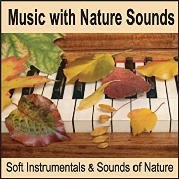 Music with Nature Sounds: Soft Instrumentals & Sounds of Nature for Healing Music with Ocean Waves and Forest Sounds