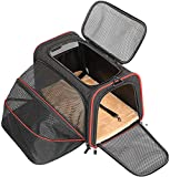 image of airline pet carrier for small dog