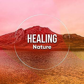 Healing Nature, Vol. 6