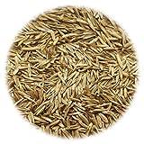 Zoom IMG-1 vidaxl semi di erba per
