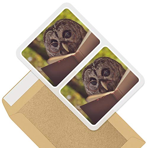 Rectangle Stickers (Set of 2) 10cm - Wise Barn Owl Reading Book Lover Decals for Laptops,Tablets,Luggage,Scrap Booking,Fridges, 46462