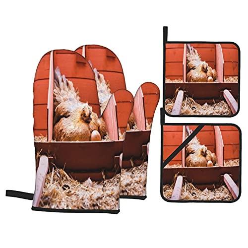 Juego de 4 Guantes de Horno y agarraderas,Foto de cría de Animales de Granja con gallina ponedora incubando Dentro de Jaula y Huevos,Utilizado para cocinar,Hornear y Asar a la Parrilla