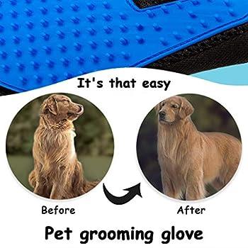 OldPAPA Gants de toilettage pour animal domestique 2020 avec poils longs et courts