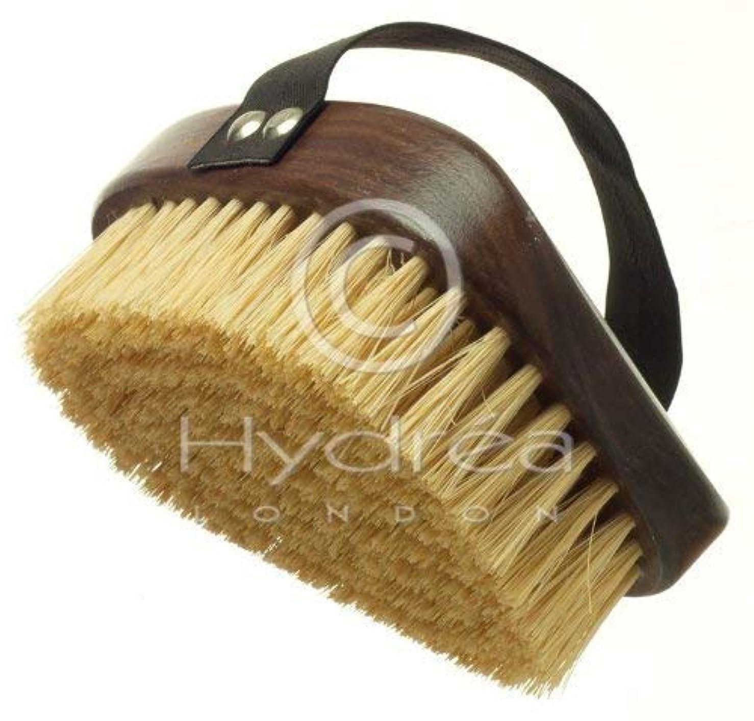 意図する横向き援助するHydrea London Walnut Wood Natural Bristle Body Brush WWS13NH