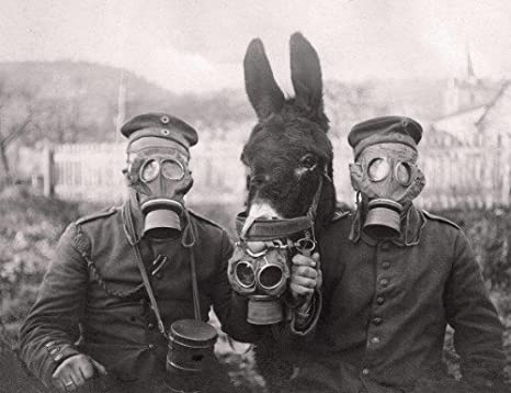 Amazon.com: ConversationPrints World WAR 1 Donkey Soldier Gas MASK Glossy  Poster Picture Photo Banner WWI: Posters & Prints