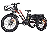 Addmotor Motan Electric Tricycle 24 Inch Fat Tire Electric Trike 3 Big Wheel 750W Rear Basket Cargo Ebikes 14.5Ah Lithium Battery for Adults Seniors M-350 P7 Bicycle with Suspension Fork