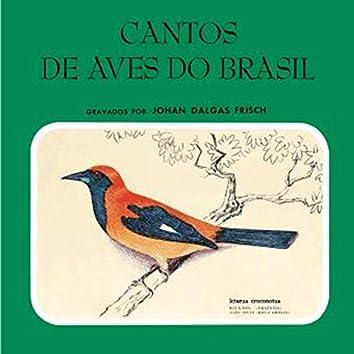 Cantos De Aves Do Brasil