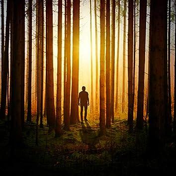 2020 Meditation Spa Meditation Sounds - Natural Rain for Sleep and Serenity