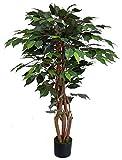 Seidenblumen Roß Ficus Excotica 120cm grün DA Kunstbaum Kunstpflanzen künstlicher Baum Dekobaum Birkenfeige