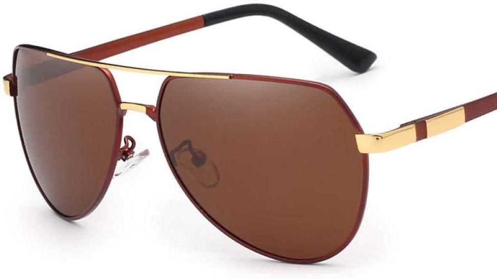 Lunettes de Soleil pour Hommes Marque Designer Pilot Polarized Male Sun Glasses gafas for Men C04BROWN