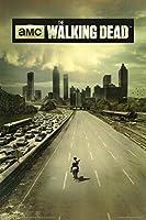 The Walking Dead Poster Dead City - Season 1 (61cm x 91,5cm)