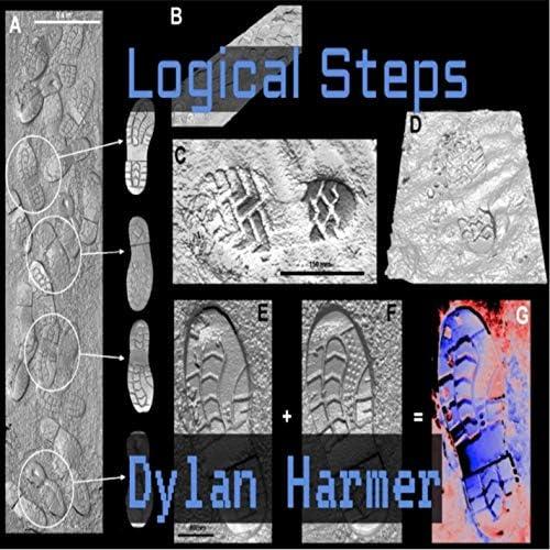Dylan Harmer