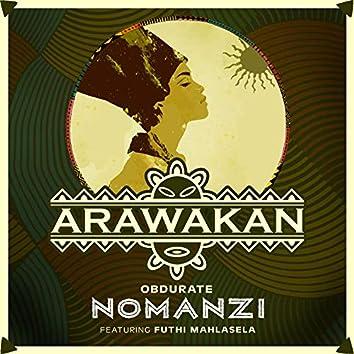 Nomanzi (feat. Futhi Mahlasela)