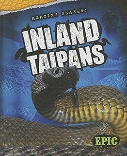 Inland Taipans (Amazing Snakes!)