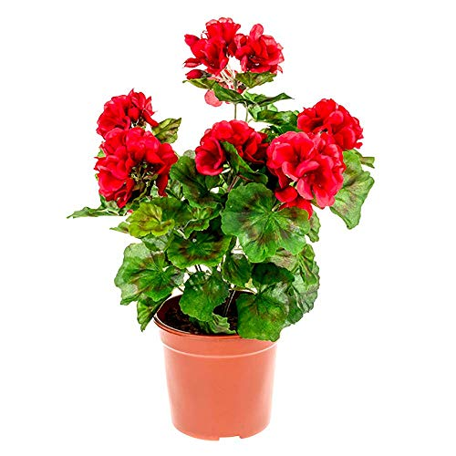 WEFLOWERSHouse of Leaves Artificial 39cm Planta de tapón de Geranio Rojo - Maceta Negra incluida