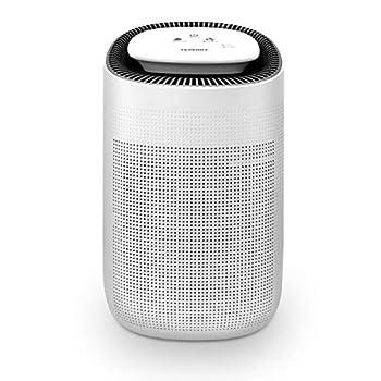 Best dehumidifier and air purifier Reviews