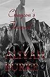 Chayton s Tempest (Megalodon Team Book 8)