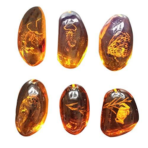 Vosarea - 5 piezas de ámbar fósil con muestras de insectos, piedras...