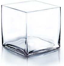 WGV Clear Square Cube Glass Vase, 8-Inch