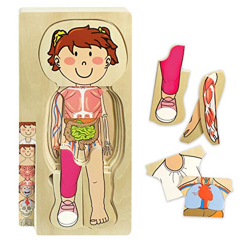 Kidzlane Wooden My Body Puzzle for Toddlers & Kids - 29 Piece Girls Anatomy Play Set Ages 3+
