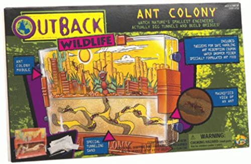 Ant Colony Outback Wildlife