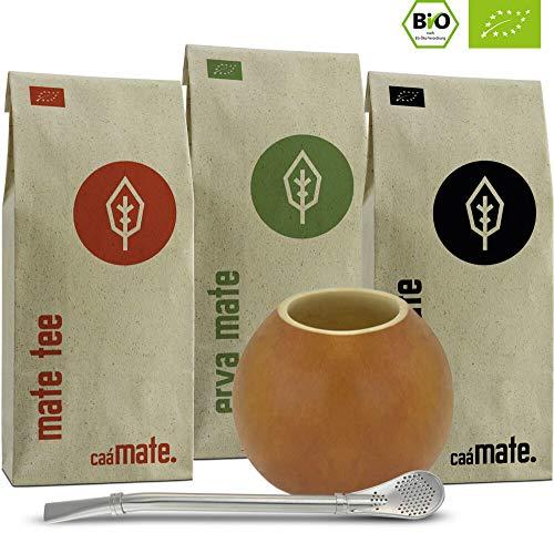 Original Mate Tee Set Bio │300g Bio Matetee + Edelstahl Bombilla + Kalebasse + Yerba Mate Zubereitungsanleitung