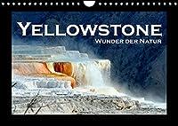 Yellowstone - Wunder der Natur (Wandkalender 2022 DIN A4 quer): Faszinierende Bilder aus dem aeltesten Nationalpark der Welt (Monatskalender, 14 Seiten )