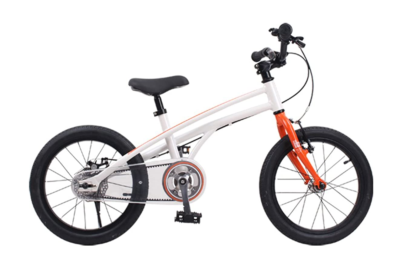 ディーラーメッシュ小道ROYALBABY(ロイヤルベイビー) 子ども(幼児向け)自転車 オレンジ [メーカー保証1年] 後輪ディスクブレーキ/ベルトドライブ  ALLOY