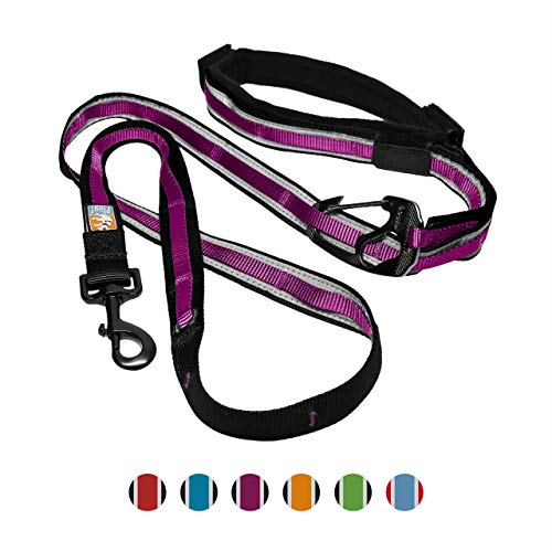 Kurgo 6 In 1 Hands Free Dog Leash | Reflective Running Belt Leash for Dogs | Crossbody & Waist Belt Leash | Carabiner| Padded Handle | for Training, Hiking, Or Jogging | Quantum Leash (Raspberry), X-Small (K01351)