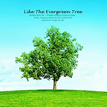 Like a green tree