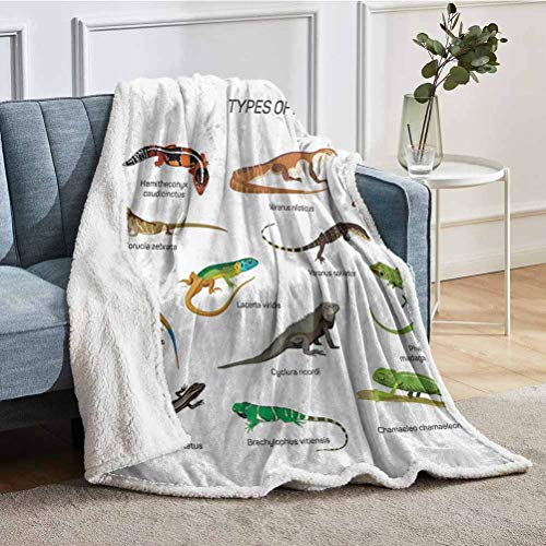 YUAZHOQI Sherpa Throw Blankets Lizard Family Design On Plain Background Primitive Reptiles Camouflage Exotic Creatures Home Couch Throw Blankets for Sofa 50' x 60' Multi