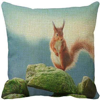 Throw Pillow Covers Quirell Soft Fresno Mall A surprise price is realized Double-Sid and Protector